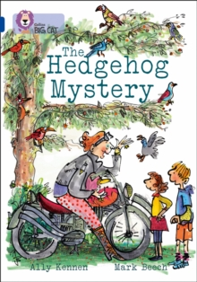 Image for The hedgehog mystery