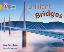 Image for Brilliant bridges