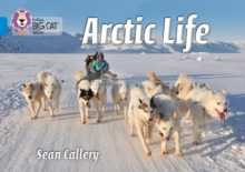 Image for Arctic life