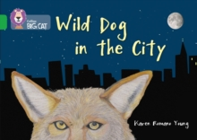 Image for Wild dog in the city