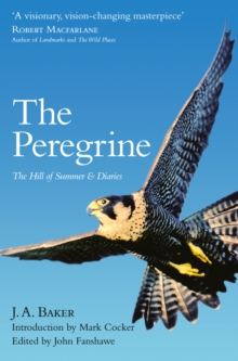 Image for The peregrine  : The hill of summer