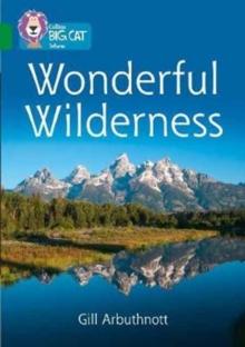 Image for Wonderful wilderness