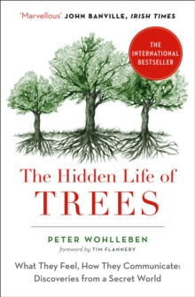 Image for The hidden life of trees  : what they feel, how they communicate