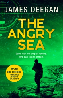 Image for The angry sea