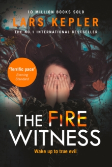 Image for The fire witness