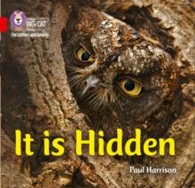 Image for It is hidden