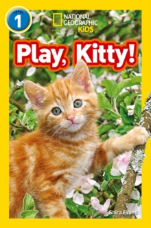 Image for Play, kitty!