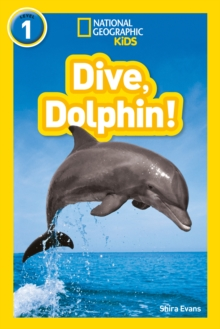 Image for Dive, dolphin!