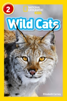 Image for Wild cats