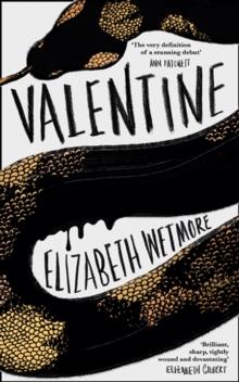Image for Valentine  : a novel