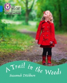 Image for A trail in the woods