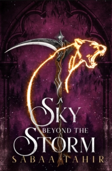 Image for A Sky Beyond the Storm