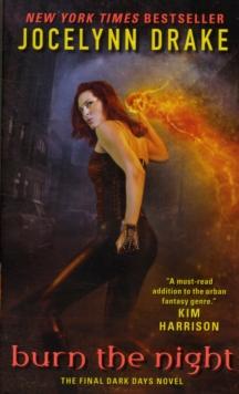 Image for Burn the night  : the final Dark days novel