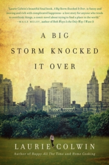 A Big Storm Knocked It Over: A Novel