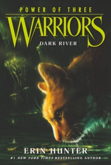 Image for Warriors: Power of Three #2: Dark River