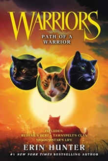 Image for Warriors: Path of a Warrior