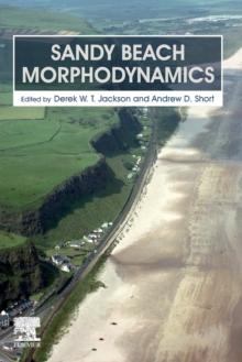 Image for Sandy Beach Morphodynamics