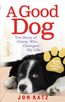 Image for A good dog  : the story of Orson, who changed my life