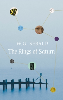 Image for The rings of Saturn