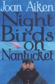 Image for Night birds on Nantucket