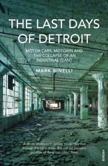 Image for The last days of Detroit