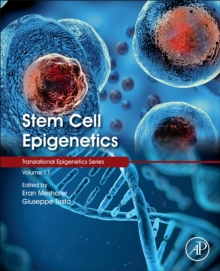 Image for Stem cell epigenetics
