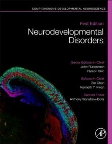 Image for Neurodevelopmental Disorders : Comprehensive Developmental Neuroscience