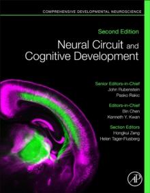 Image for Neural Circuit and Cognitive Development : Comprehensive Developmental Neuroscience