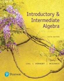 Image for Introductory & intermediate algebra
