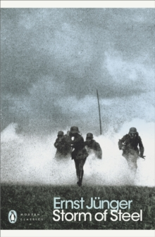 Image for Storm of steel