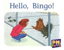 Image for Hello, Bingo!