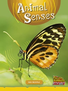 Image for Animal Senses