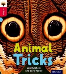 Image for Animal tricks