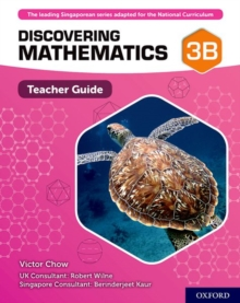 Image for Discovering Mathematics: Teacher Guide 3B