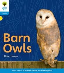 Image for Barn owls