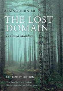 Image for The lost domain