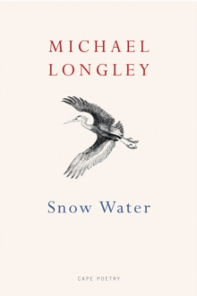 Image for Snow water