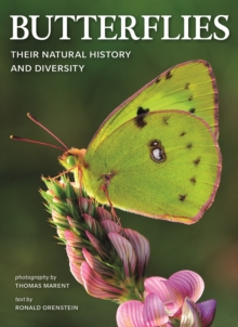 Image for Butterflies: Their Natural History and Diversity