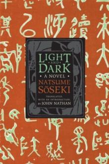 Image for Light and Dark : A Novel