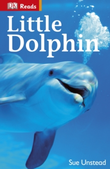 Image for Little Dolphin.