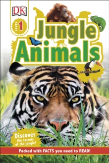 Image for Jungle animals