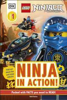 Image for Ninja in action!