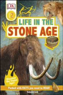 Image for Life in the Stone Age
