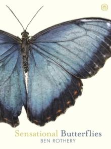 Image for Sensational butterflies