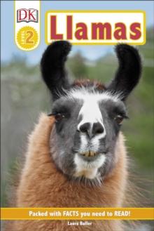 Image for Llamas