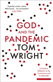 Image for God and the Pandemic : A Christian Reflection on the Coronavirus and its Aftermath