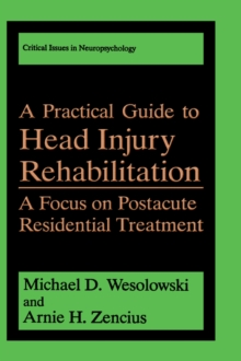A Practical Guide to Head Injury Rehabilitation: A Focus on Postacute Residential Treatment (Critical Issues in Neuropsychology)