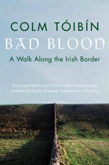 Image for Bad blood  : a walk along the Irish border