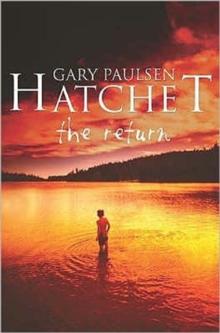 Image for Hatchet  : the return