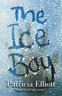 Image for The ice boy